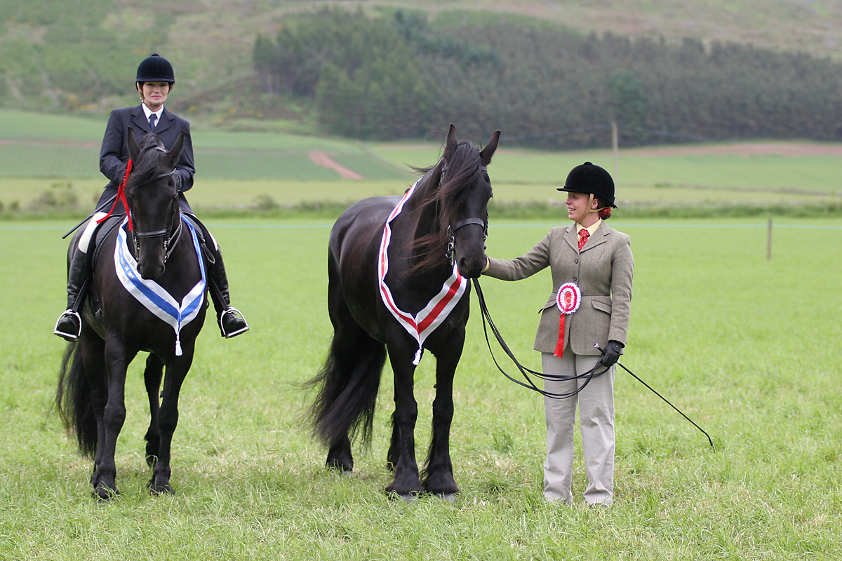 Reserve and Champion