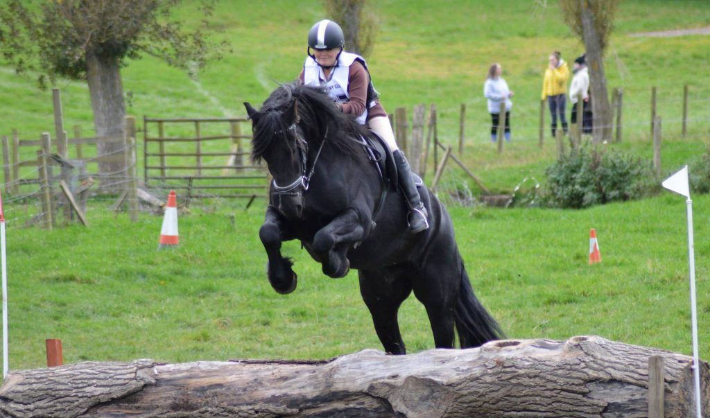 X Country Jumping With Gladiator Friesians Scotland
